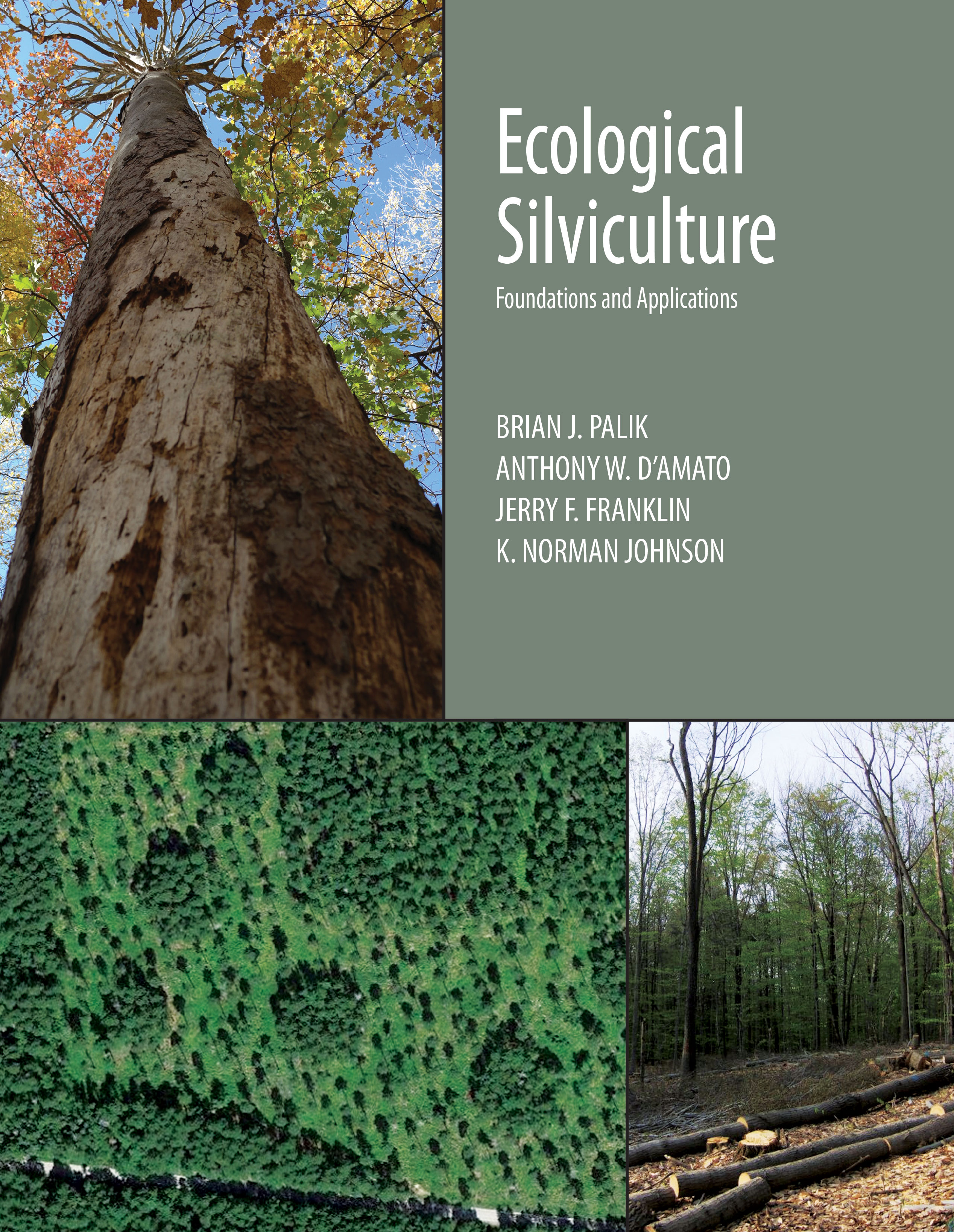 Ecological Silviculture: Foundations and Applications by Brian J. Palik, Anthony W. D